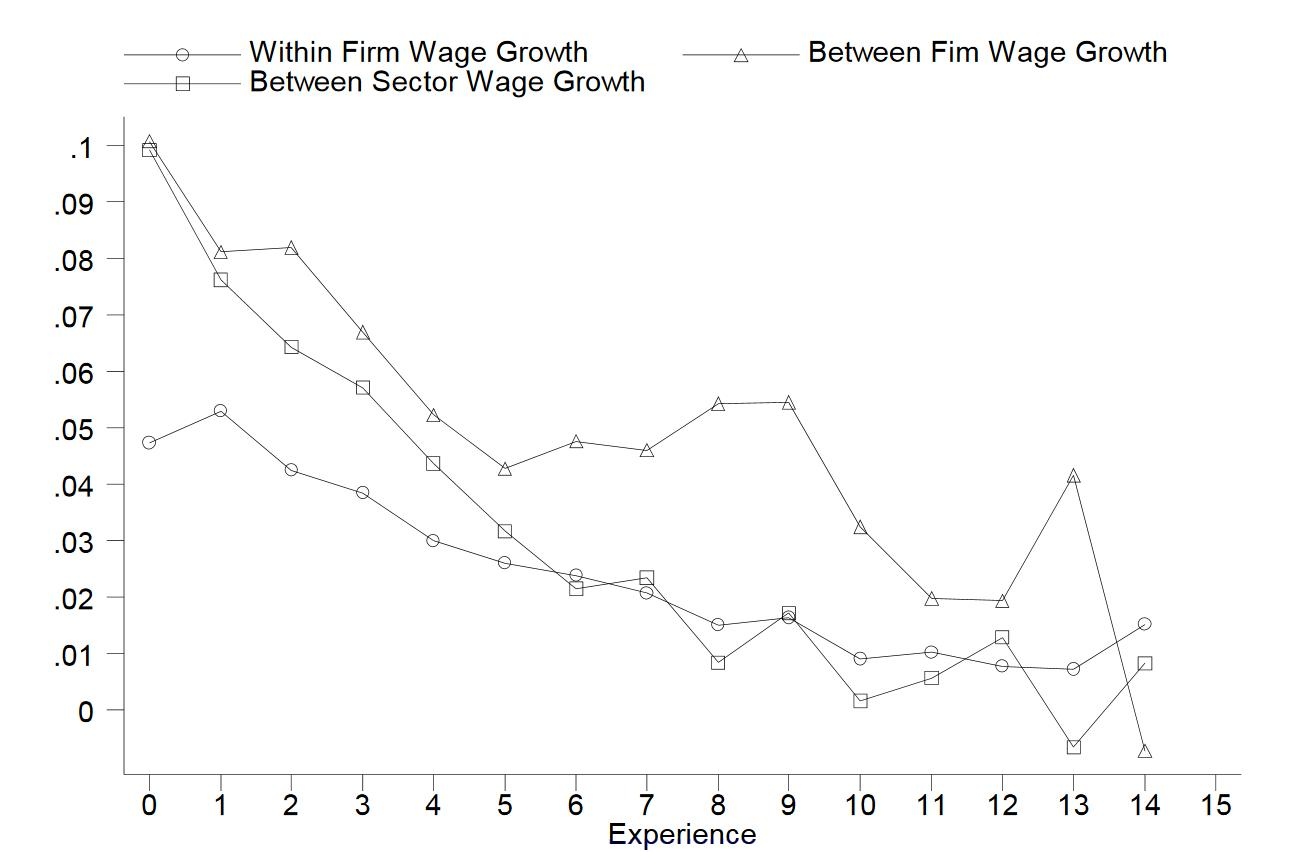 Figure. Within and between firm and sector wage growth, by experience